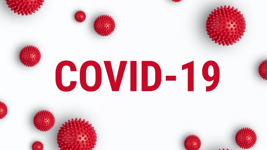 COVID-19 and travel to Russia